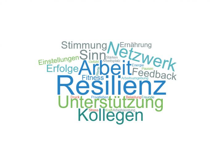 Resilienzprofil